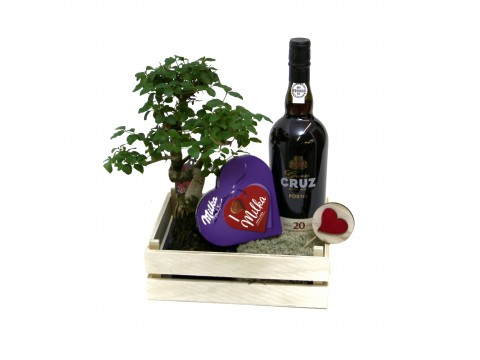 Caixa de Vinho do Porto,  Bonsai e Chocolates